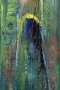 'Erwartung-I' - Acryl - Annemarie Seidel - artelier41