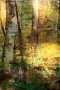 'Sonnenstrahlen' - Acryl - Annemarie Seidel - artelier41